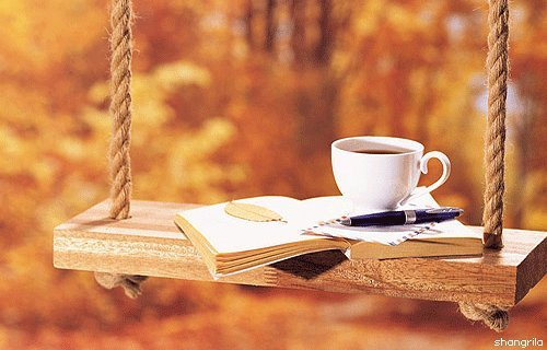 book-coffee-hot-love-it-nature-Favim.com-270516